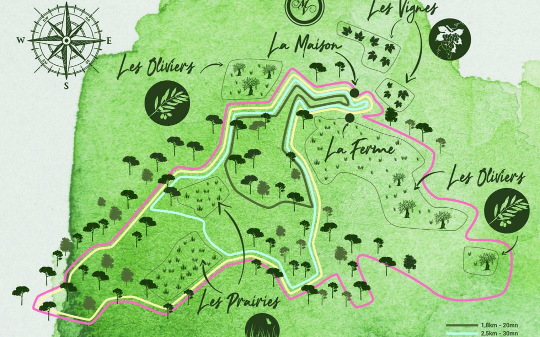 Cartographie – Domaine Monte Verdi
